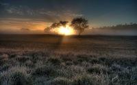 28 фантастических туманных пейзажей со всего мира (часть 1)