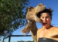 19 самых смешных фотобомб со всего мира