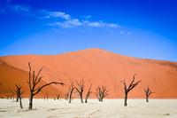 Сюрреализм мертвой долины – даже в месте, где ничего нет, можно найти много прекрасного