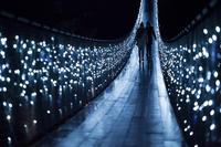 Удивительный мост через реку Капилано