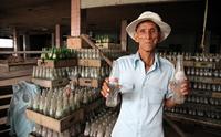 Заброшенный завод Pepsi в Камбодже