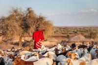 48 часов в деревне масаи