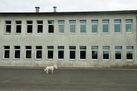 Провинциальная Латвия в объективе Катрины Кепуле
