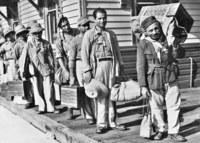 19 снимков о том, как выглядела  иммиграция в Австралию в 20 веке