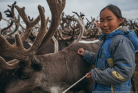 Север России: жизнь оленеводов в тундре