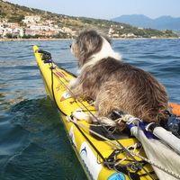 Он бросил все и отправился в 3-летнее плавание по Средиземному морю