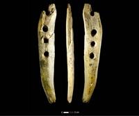 Археологи обнаружили устройство для витья веревок, которому 42 тысячи лет
