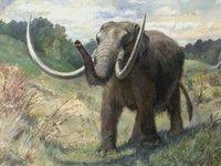 Почему доисторические животные были такими огромными