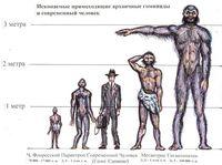 Люди-великаны: недостающее звено эволюции или вымысел