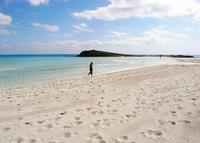 Пустынный пляж Нисси Бич