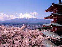 Почему японцы живут дольше всех в мире