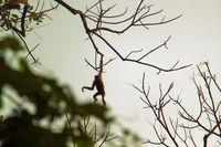 15 неожиданных фото Индии, которую вы совсем не знаете