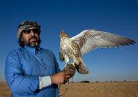 Фотограф снимал Саудовскую Аравию, когда туда не пускали ни одного туриста
