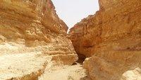 В каньоне Тамерза, по пути к одноименному оазису