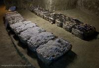 Пещеры троглодитов, ферма грибов и обед с улитками