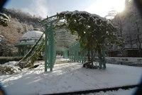 Снег в Боржоми - большая редкость