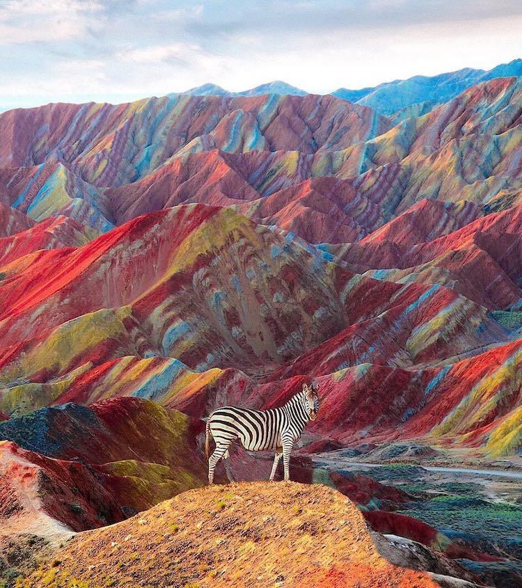 Фотоэксперт создает фантастические изображения диких животных в неожиданной среде