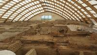 Афера века: знаменитый ученый годами занимался подделкой археологических находок