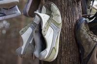 В Канаде фотограф нашла загадочный лес, полный обуви