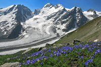 Кавказ — это Европа или Азия: где проходит граница между двумя частями света
