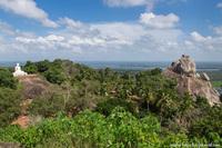 Колыбель буддизма на Шри-Ланке или загадка о манговом дереве
