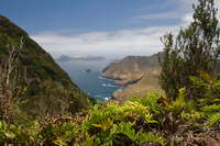 Остров Робинзон-Крузо: где расположен тот самый клочок суши, приютивший Робинзона