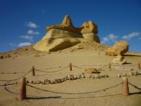Долина китов в Египте: когда-то в Сахаре плескалось теплое море