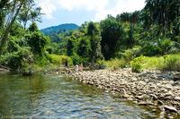 Сплав на плотах в национальном парке Као Лак в Таиланде