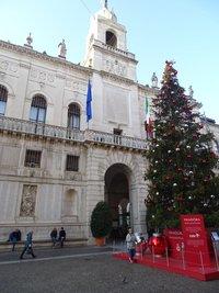 Рождественская ель на площади Moroni Sede Municipio