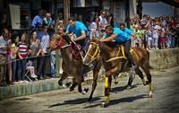 Скачки в деревне Пили, Кос