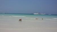 Пляжи Таиланда весной