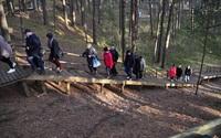 Пешие прогулки по майскому парку Дзинтари.