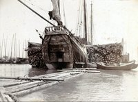 Уникальные исторические снимки: как выглядел Шанхай 100 лет назад