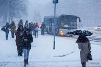 Дубленка, шуба или пуховик: ученые выяснили, в чем теплее в лютые морозы