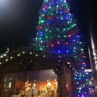 Рождественская елка на О'Коннел стрит