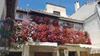 В мае Гранада утопает в цветах