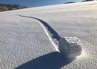 Тайна снежных «тюков»: загадочные круги из снега удивили жителей Англии