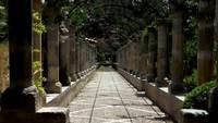 Сад Альфибия