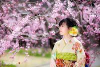 Потрясающие снимки, демонстрирующие красоту сезона дождей в Японии