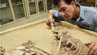 Древние чудовища, киты и невидимые реки: какие невероятные тайны скрывает Сахара
